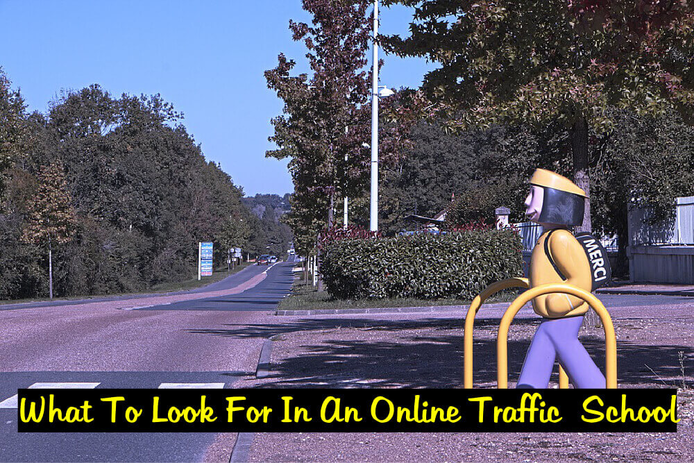 what-to-look-for-in-an-online-traffic-school